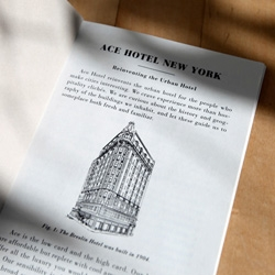 new in the mail: Super cute Booklets from the Dept. of Cultural Engineering with the Technical Specifications for Ace Hotel Properties ~ and the new NYC hotel looks awesome! Details like the smeg fridges and record players!