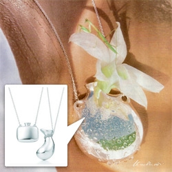 Elsa Peretti Bottle Pendants for Tiffany & Co ~ perfect little necklaces you can place a flower cutting in, or grow a seedling?