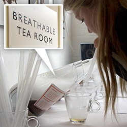A breathable tea room from Camellia's Tea was one of many highlights at the 2013 Experimental Food Society Spectacular.