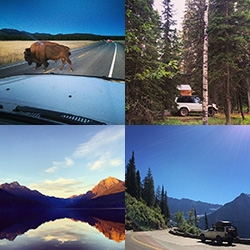 Inspiration exploring from LA to Yellowstone National Park to roadside bison to cocktail pasties to Glacier National Park to camping at Bowman Lake and cruising the magnificent Getting To The Sun Road... and everything in between!