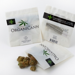 Marijuana just got greener. OrganiCann's sustainably grown, organic, medical cannabis is now available in environmentally friendly packaging that you can compost in your own back yard.