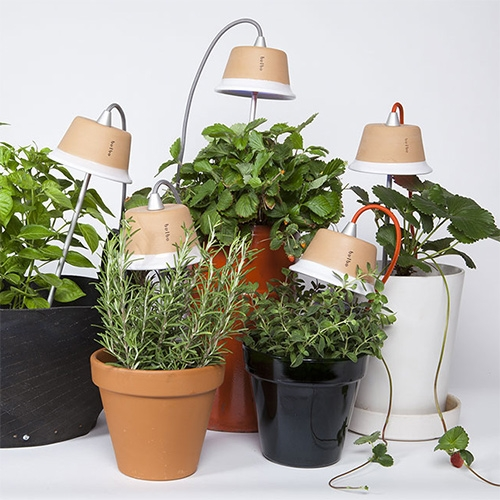"Bulbo Cynara LED Grow Lights - modular grow lights made of Italian terracotta, aluminum rods, and cloth cords which can be ""planted"" in the pots, suspended above, or freestanding around a cluster of plants."