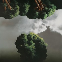 Swiss-born painter Raffaello Ossola alters perspective by turning the world upside down. Trees inhabit land and sky, or are we fooled by their reflections?