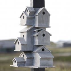 Generation living for birds.