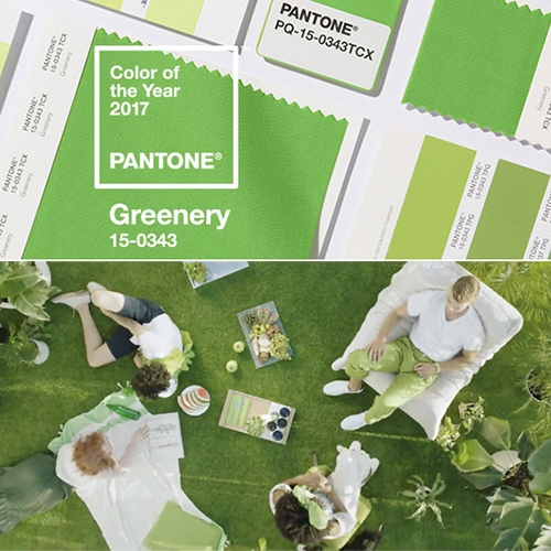 "Pantone Color of 2017 is GREENERY! Pantone 15-0343 ""A refreshing and revitalizing shade, Greenery is symbolic of new beginnings."" They call it nature's neutral... a fresh and zesty yellow-green shade. (Also SO close to our NOTCOT Nashville Door!)"