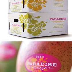 Colorful packaging design for the brand of tropical fruits Paradise by Edmundson|Martin