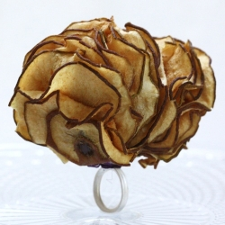 a ring so delicious looking you could eat it. oh wait, you actually can! sliced dried fruit mixed with silver (no added preservatives!) makes lovely wearable and edible rings.