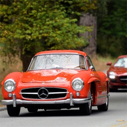Monterey 2010: Pebble Beach Tour d'Elegance ~ Autoblog has some stunning pics!
