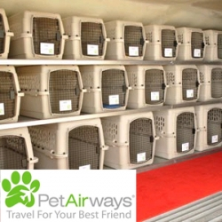 Traveling with your pets?  Pet Airways starts up this July.