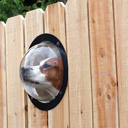 PetPeek is a transparent plastic window that allows your best friend a view of the outside world.