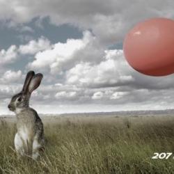 Peugeot 207 RC: Rabbit