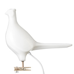 Pheasant Light by Ed Carpenter - the cousin of the iconic pigeon light! Made of vacuum formed acrylic...