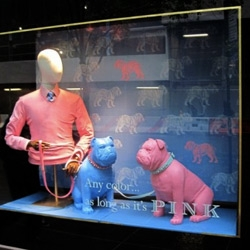 On window display animals ~ Puma had the Penguin army... now Thomas Pink has BULLDOGS!