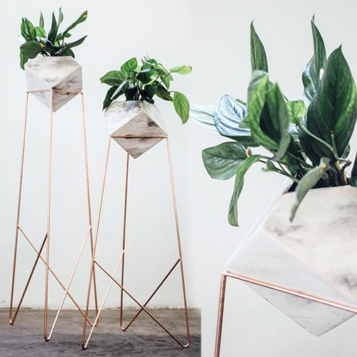 Diamantina & La Perla Maceta Jade Planters