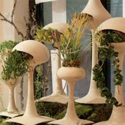 Golly Pods: mod plant sculpture by Jason Lane & Tend ~ beautiful collaboration!
