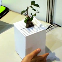Researchers at Keio University are creating interactive plants, enabling them to display emotions and communicate with people.