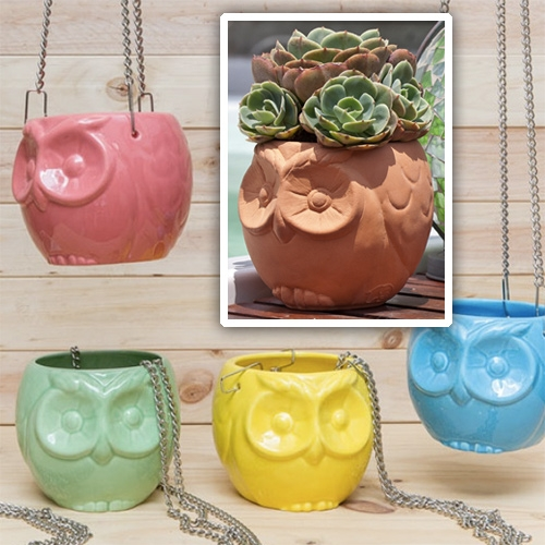 Habibi Suculentas Plantitas Búho! Adorable owl planters in normal and hanging variants and a rainbow of color options!