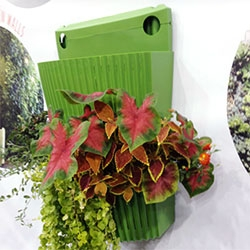 Woolly Pocket's latest is a plastic planter for living walls/gardens