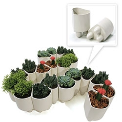 Good Erdle Elliot Planters - adorable little planters (with feet!) that can be arranged in a circle, curved patterns, and more!