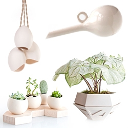 Light and Ladder - great little shop of simple  geometric planters, vessels, hooks, lights and more in porcelain, wood, leather, and brass.