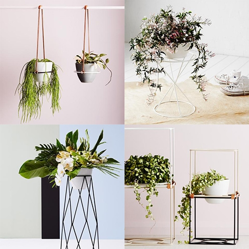 Ivy Muse - this Australian shop has some interesting powder coated steel plant stands and hangers. Their concept store 'Botanical Emporium' looks lovely!
