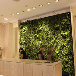 GreenFortune's Plantwall. turn an entire wall into a garden.