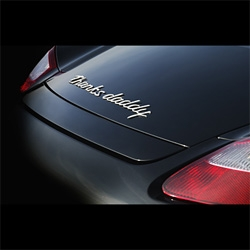 Name Your Porsche. That cake frosting script can now be customized to your hearts delight.