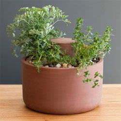 Joey Roth's latest ~ the self watering planter! Made from naturally porous unglazed earthenware you simply need to fill the reservoir and your plants/soil will do the rest...