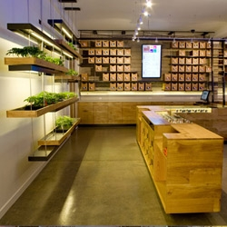 This medical marijuana dispensary located in San Francisco, designed by Sand Studios, has won an AIA-SF 2011 design award.