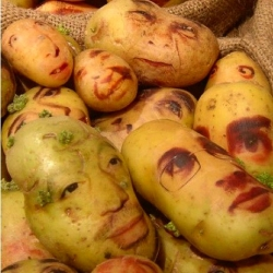 Ginou Choueiri's potato portraits creep me out.