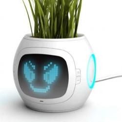 Interactive Pictograma Pots - Pet Plant