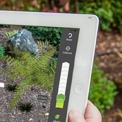 Prelimb - an augmented reality app to help you design and visualize the perfect garden by David Harms.