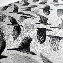 Kai & Sunny's 'Migration East' Print Edition from the 'Ghost of Gone Birds' show. Beautiful details on this grayscale swarm!