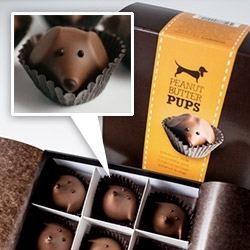 Gearharts adorable Peanut Butter Pups - premium milk chocolate and Virginia artisan peanut butter decorated with a dark chocolate face and toasted almond ears.