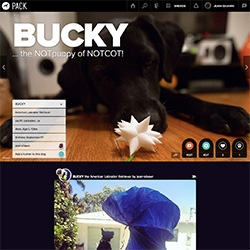 Pack - new website that is like an Instagram/Social Network for Dogs (+ their humans)... the most impressive aspect is really the clean, playful UI to start an account. (Discovery/Brand Integrations i'm not so sure about yet)