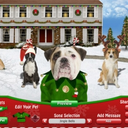 Critter carols | And the Purina launches its generator cards online, using dogs and cats.