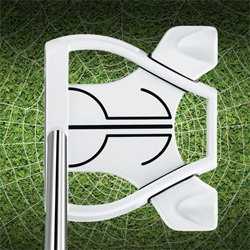 TaylorMade's Ghost Spider Putter ~ apparently the white makes it easier to aim? It also has a pure roll surlyn insert and movable weight technology.