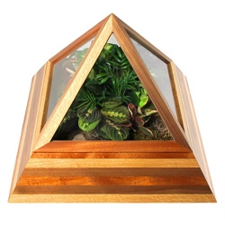 Core Deco 'Pyramid Terrarium' takes indoor gardening to a new level of luxury and splendor. Constructed with 3 choice hardwoods: White Oak, Mahogany, and Black Walnut.
