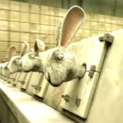 Animal testing occurs still. This commercial goes there in a vivid new way, made for Australian group Choose Cruelty Free.