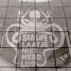 Rain Campaign ads for Sea life Schevenigen from Fresh Green Ads show up on the sidewalk when it rains. Cute graphics and great concept!