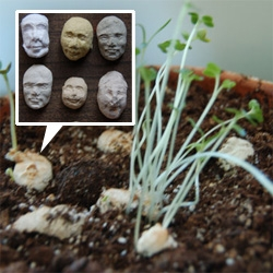 Seed Faces by Kelsey Pike. Little molded paper faces filled with sprout seeds ~ soak in water, place on top of soil, and poof... creepy sprouts grow out of the creepy little heads...