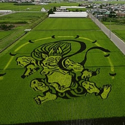 """Pimp My Rice Paddy"" - Using three difference strains of rice, the people of Inakadate, Japan have created works of crop art since 1993."