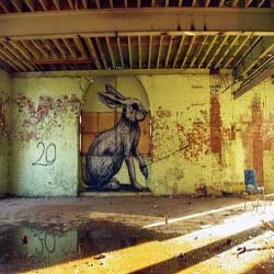 Urban Artist ROA hits Warsaw with some amazing rabbits