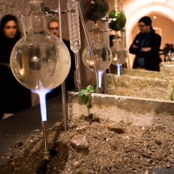 "Commonstudio's ""A-Roma"" installation re-interprets ancient Rome through a contemporary lens by distilling the scents of the living urban ecologies growing on top of, in between, and alongside historic sites."
