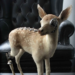 It looks like Bambi is now part of the Borg collective, thanks to the imagination of Lisa Black. don't miss the other mechanical taxidermy items in her portfolio