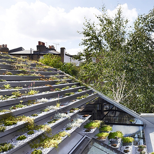 The Garden House in Hackney, London complete with a roof of plants. Gorgeous home for Whitaker Malem by Hayhurst and Co.