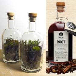 Art In The Age Of ~ is having a Terrarium Making Workshop to recycle Root + Snap liquor bottles! (Sadly, event is only in Philly!)
