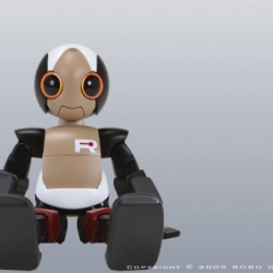 ROPID is the most athletic humanoid robot! Just been introduced in Japan. Not only he can jump high, he looks so sweet!