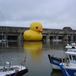 """Florentijn Hofman's massive rubber duckie. """"Loire Estuary 2007"""""""