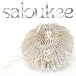 The name 'Saloukee' comes from my name – Sarah Louise Kelly – and I create sculptured art jewellery made in paper.